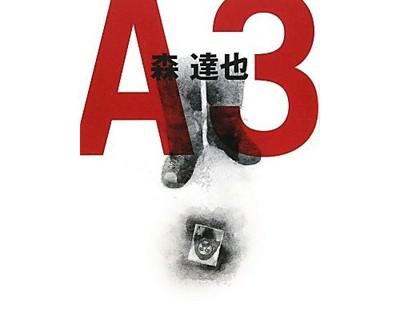 a3a3a3a-400x310